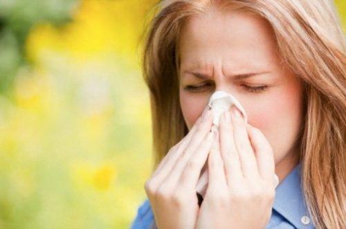 Los ácaros causan asma y alergia: ¡Descubre cómo protegerte!