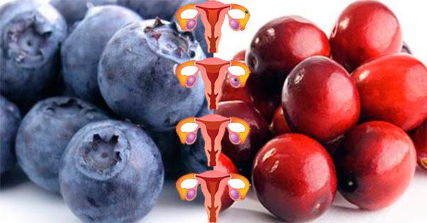 Esta maravillosa fruta ayuda a sanar el cáncer de ovarios