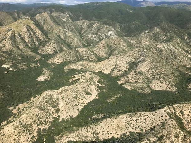 Danilo: 'País no debe ser réplica de Haití'