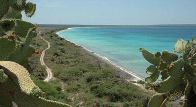 Anuncian construcción de un aeropuerto y hotel para Bahía de las Águilas