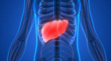 Causas y 5 síntomas de la falla hepática