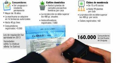 Largas filas de personas en farmarcias en busca Marihuana Cannabis luego de estar legalizada en Uruguay