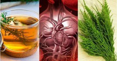 Mejorar la circulación sanguínea con 5 remedios herbales