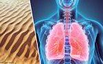 Silicosi la enfermedad por polvo de sílice