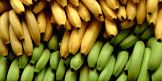 Diferencias nutricionales entre la banana y el plátano
