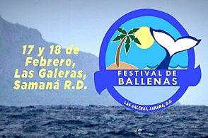 Se activa temporada de Ballenas Jorobadas e invitan al festival de las ballenas en Las Galeras