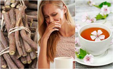 Remedios naturales para tratar la esofagitis