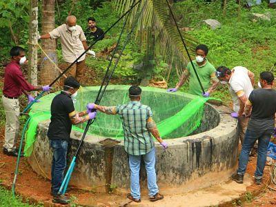 El incurable 'virus murciélago' Nipah despierta alerta en el estado indio de Kerala