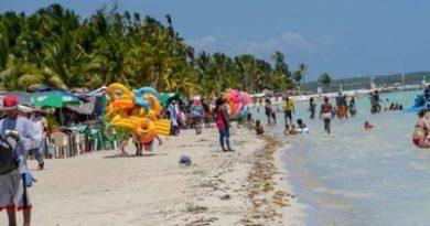LA INSALUBRIDAD: Sargazo y las fundas de basura adornan la playa de Bocha Chica